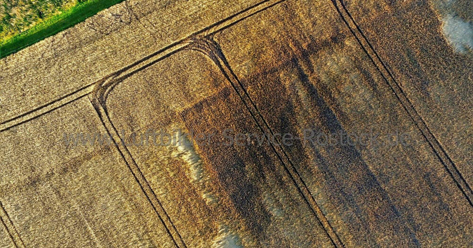 Feld-Schäden und Tier-Suche mit Drohne entdecken